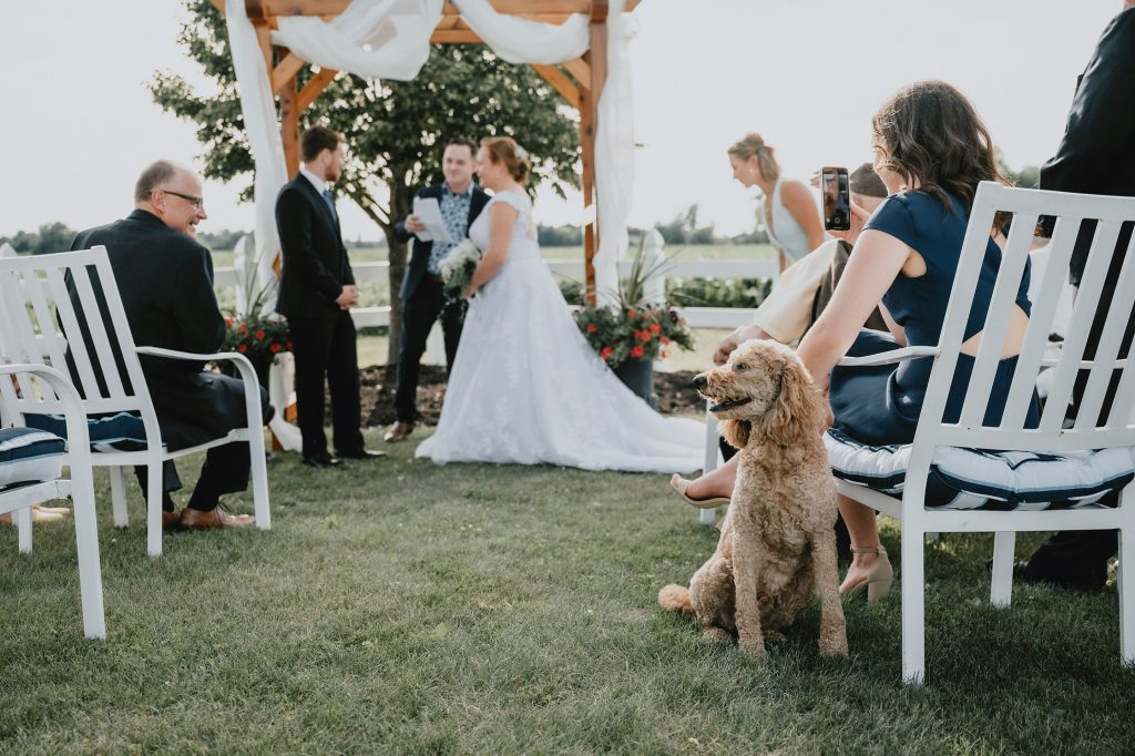 Ottawa Valley Outdoor Wedding